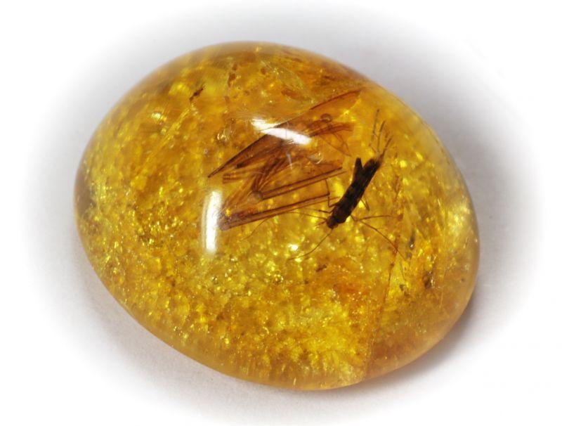последние желтые драгоценные камни фото и названия музыкой шести
