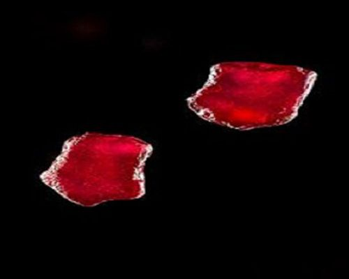 C:\Users\andrey\Downloads\Ruby Gemfields pair PB Ru-N tot [45ct].jpg